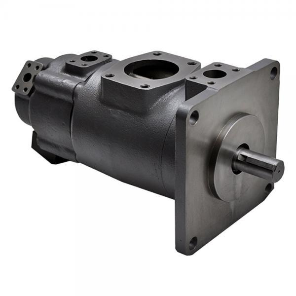 Yuken PV2R14-14-153-F-RAAA-31 Double Vane pump #1 image