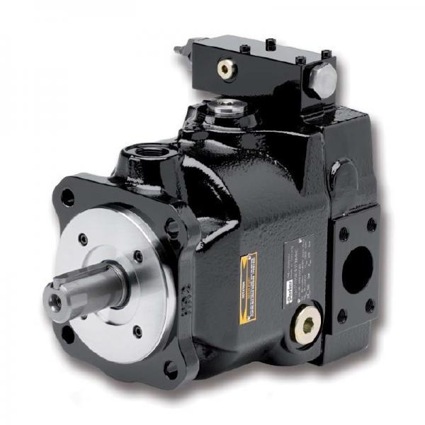 PAKER PAVC100 Piston Pump #2 image