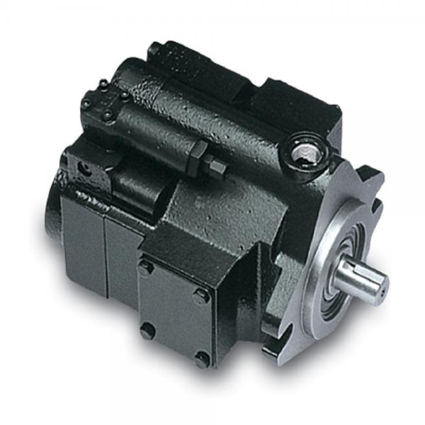 PAKER YB1-63 Piston Pump #1 image